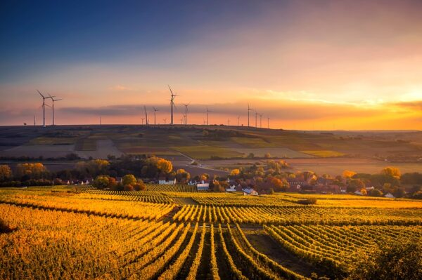 5 Countries Leading the Production of Renewable Energy